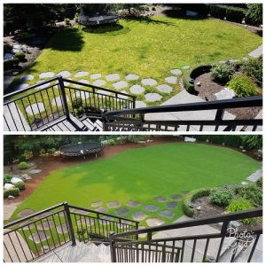 How to Choose an Artificial Grass Installer