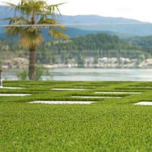 Cascades Casino Gambles on Artificial Turf