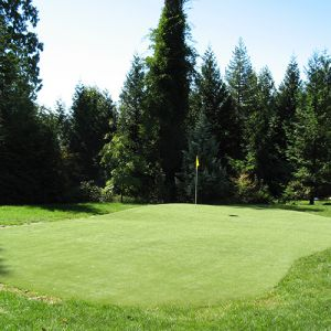 Nylon versus Sand-Filled Synthetic Putting Greens