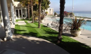 Our Artificial Turf Company Provides Turf Grass That Practically Takes Care of Itself