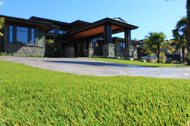 Expert Artificial Grass Lawn Installers