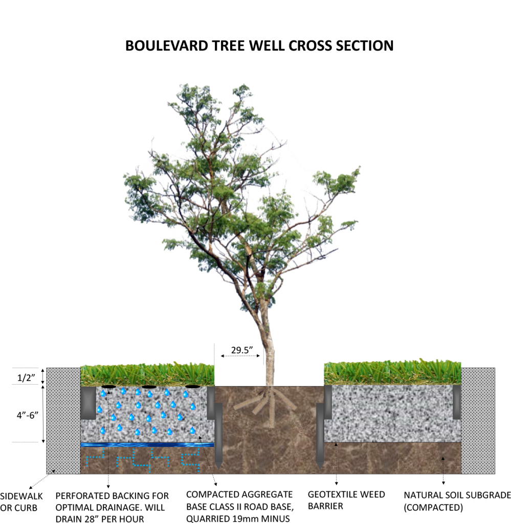 Boulevard-Tree-Well-cross-section-999x1024 The Art of Synthetic Turf Installation