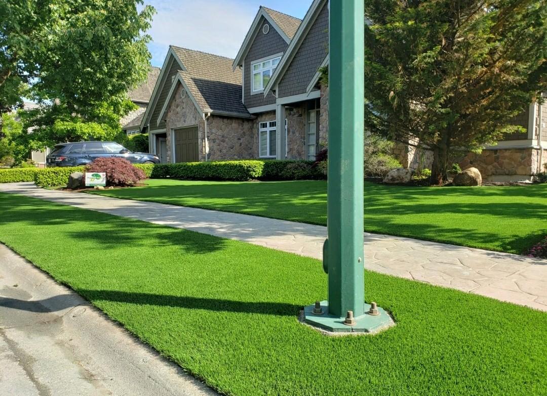Artificial-Grass Artificial Grass
