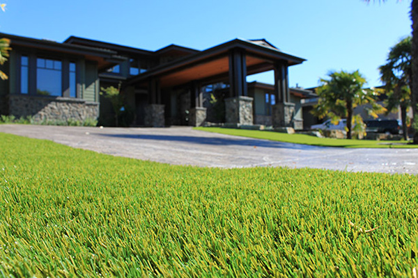 Canada's Most Impressive Lawns are Fake – Get Your Fake Grass Today
